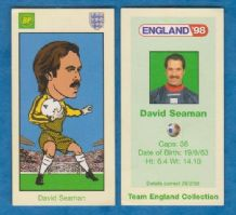 England David Seaman Arsenal (BP)